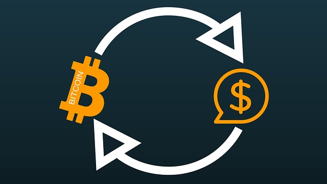 převod měn