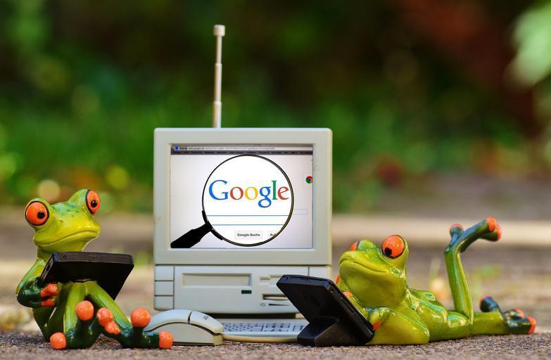 žabáci a google.jpg